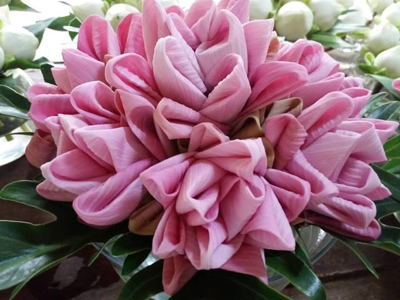 Here And Now With Arts Of Folding Lotus Flower